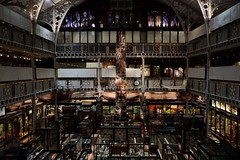 Pitt Rivers Museum, University of Oxford (teawithtoffs) Tags: museum architecture victorian wideangle symmetry oxford symmetrical fujifilm anthropology ethnography ethnology universityofoxford instagram fujixpro1