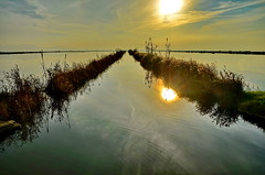 Valencia, Albufera Water Road to Infinity (gerard eder) Tags: world travel sunset espaa lake valencia reflections lago see nationalpark spain europa europe sonnenuntergang outdoor landwirtschaft viajes agriculture ricefields spanien reise albufera agricultura arrozales albuferalake