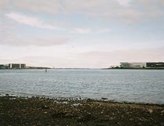 (Misao Hasegawa) Tags: makina 67 plaubel nikon sea haneda tokyo film filmlover waterfront portra landscape
