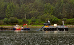 Scotland West Highlands Argyll Loch Striven a salmon farm 26 June 2016 by Anne MacKay (Anne MacKay images of interest & wonder) Tags: scotland west highlands argyll loch striven salmon farm workers xs1 26 june 2016 picture by anne mackay