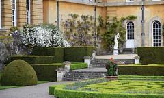 The Italian Garden - Blenheim Palace (Mark Wordy) Tags: blenheimpalace oxfordshire gardens theitaliangarden formalgarden ornate box clematis wisteria