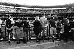 Watching the Mariners play the Brewers. (poopoorama) Tags: dannyngan dannynganphotography fujifilm garrisontitan mariners safecofield seattle starwars starwarsnight starwarsweekend xseries x100t washington unitedstates