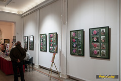 "Udruga ljubitelja kamelija, Izložba kamelija 2015, Dodjela nagrada • <a style=""font-size:0.8em;"" href=""http://www.flickr.com/photos/101598051@N08/16277789393/"" target=""_blank"">View on Flickr</a>"