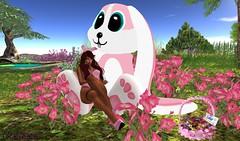 coelhinha (Kell Parx) Tags: rabbit easter happy s2 pascoa coelhinha