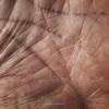letture e previsioni (pamo67) Tags: macro lines square hand skin mano folds pelle incarnate palmo linee pieghe incarnato handbreadth pamo67 pasqualemozzillo readingsandforecasts