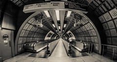 Waterloo. (Suggsy69) Tags: blackandwhite bw monochrome underground mono blackwhite nikon tube tunnel waterloo walkway londonunderground thetube tfl d5100
