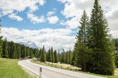 The road (mcdri86) Tags: road trip travel sky italy cloud tree nature landscape photo nikon europe photograph dolomiti 풍경 자연 여행 사진 나무 이탈리아 길 유럽 니콘