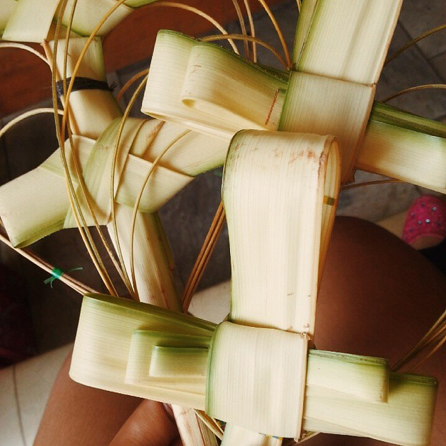 Blessed Palm Sunday Everyone 😉🙏