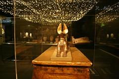 Exposicin momias. (edea44) Tags: granada egipto parquedelasciencias momias