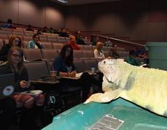 Why we do this.. (EcoSnake) Tags: education teaching lizards understanding borders reptiles iguanaiguana greeniguana
