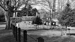 The Old Stables, Godmersham (Aliy) Tags: trees blackandwhite bw house field rural blackwhite kent village lawn oldhouse georgian stables godmersham oldstables