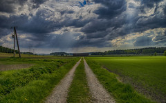 Light on green (Joni Mansikka) Tags: trees green nature grass clouds woodland suomi finland landscape spring outdoor path shed fields sunrays paimio tamronspaf2875mmf28xrdildasphericalif