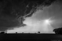 Angry Sky in Kansas (Jonathan Tasler) Tags: blackandwhite cloud storm tree field kansas thunderstorm prairie wallcloud