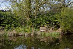 Haus am See (Boyens.) Tags: house lake by garden see spring pond klein hamburg botanic teich garten frhling 6d botanischer flottbek entenhaus ef2470f4lis 20160501005