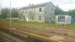 E' vietato oltrepassare la linea gialla (Aellev) Tags: poppy poppies stazione papaveri rudere ferrovia casaabbandonata binario codogno aellev