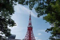 GR001092.jpg (Ryo) Tags: sky japan tokyo tokyotower 21mm shibakoen gw3 ricohgrii