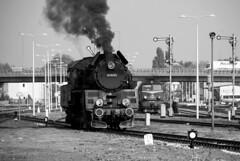 Wolsztyn yard (std70040) Tags: steam steamengine steamlocomotive ol49 classol49