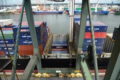 Celina Star (DST_1440) (larry_antwerp) Tags: 9210086 celinastar cmacgm psaterminal container antwerp antwerpen       port        belgium belgi          schip ship vessel