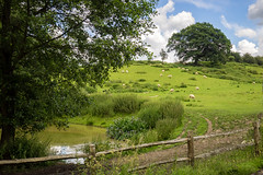 A Kentish Landscape (Bob Radlinski) Tags: uk greatbritain travel england kent europe nationaltrust otham stoneacre