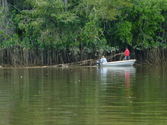 Fishing the Suriname River
