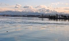 DSC_4722 Bodensee mit Blick zum Alpstein (kaweyka) Tags: schweiz bodensee alpstein romanshorn