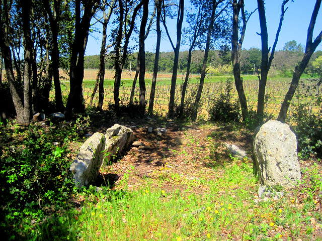 Le dolmen de Campdumy