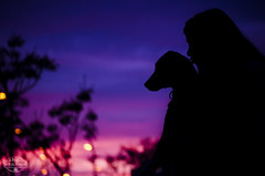 El Amor entre dos Especies (Raquel Snchez Lahoz) Tags: sunset dog amigos atardecer photography amigo friend kiss perro puestadesol bestfriend dalmatian beso owner fotografa 55200 dueo dlmata teleobjetivo mejoramigo nikond5100 raquelslphotography