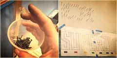 Decoração com pregos (super_ziper) Tags: diy handmade craft quadro prego decoração cor martelo tutorial pap parede letras linha lã colorido frase novelo palavra passoapasso superziper
