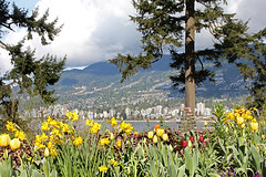 Prospect Point looking lovely today (Gordana AM) Tags: park canada beautiful vancouver point photography photo spring photographer bc britishcolumbia lookout stanley prospect portcoquitlam gordana lowermainland lepiafgeo wwwgordanaphotocom gordanamladenovic