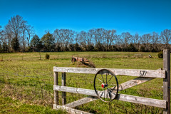 Thompson Hollow Farm Gate (Dave Reasons) Tags: wheel march spring gate unitedstates farm tennessee sunny bluesky pasture lewisburg manurespreader