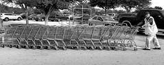 Hey It's a Job (sinbadcc1) Tags: street bw man orlando streetphoto shoppingcarts