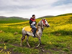 Just an amateur dream! (AnouarDZ) Tags: sport de cheval prairie paysage champ colline selle quitation
