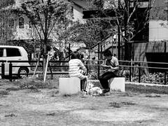 Shashin - DSCN4661 (Mathieu Perron) Tags: life city bridge people bw white black monochrome japan nikon noir market perron daily nb kobe journey  mp organic blanc japon personne ville gens vie mathieu    sjour   brik quotidienne  umie    nrik    p520  zheld
