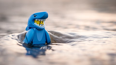Shark Attack (Reiterlied) Tags: sunset sea guy beach water japan toy tokyo shark lego outdoor wave suit minifig minifigure