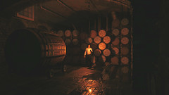 A Well Stocked Cellar (gamingink) Tags: italy game games videogames gaming gamer videogame playstation ps4 uncharted gamephotography uncharted4