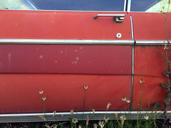 red-ford (Dill Pixels (THE ORIGINAL)) Tags: auto street door old ford window car vintage weeds rust automobile paint panel side detroit forgotten vehicle fade suburb trim washout doorhandle