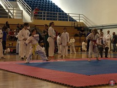stefanou_15_5_2016_knockdown_34