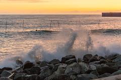 DSC_0225 (sergeysemendyaev) Tags: sunset sea storm beach spring warm waves russia dusk adler atthebeach seashore blacksea seacoast bigwaves sochi  2016                 duringf1 1 duringformulaone