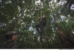 Curso de Adaptação Básica ao Ambiente de Selva (CABAS) (Força Aérea Brasileira - Página Oficial) Tags: fab force air selva militar brazilian alexandre manaus curso militares amazônia treinamento cabas sobrevivência adaptação capacitação manfrim
