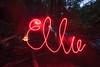 Ellie (j6 photo) Tags: camping westvirginia d750 1735mmf28d dollysodswilderness