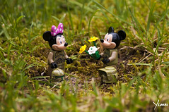Make love, not war! (Yoann!) Tags: afol lego legography minifigs minifigurine minifigure minifigures star wars toys toy troopers trooper mickey minnie flower love lovers romance war peace disney