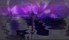 Sunset, night art (Sebmanstar) Tags: color art nature digital photoshop work photography image pentax creative explore creation research imagine imagination paysage campagne couleur transformed ide creatif