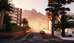 Mornings (FlavioSarescia) Tags: road street city morning travel trees summer sun streets nature sunshine sunrise landscape southafrica walk streetphotography roadtrip capetown palmtree mornings roads westerncape