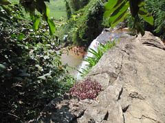 Cachoeira Vov Lcia - A Chaves ES (17) (jemaambiental) Tags: water gua waterfall falls cachoeira delicia