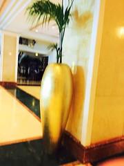 Kempinski  (1) (niketalamichhane) Tags: kempinski hotel sea beach ajman uae summer fun