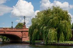 IMG_3146.jpg (Bri74) Tags: architecture berlin bridge germany nature river salix spree tree willow