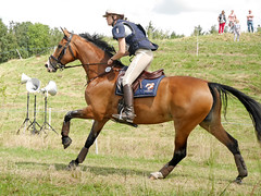 P1270826 (serita.vossen) Tags: horse horses eventing cross jumping paarden emmeloord ruiters amazones