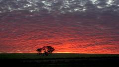 Sunset (padraic_koen) Tags: sunset southaustralia