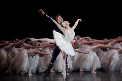 Watch: Members of The Royal Ballet on Swan Lake