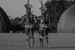 Yawalapiti (guiraud_serge) Tags: brazil portrait brasil amazon indian tribe ethnic indien matogrosso indio labret brésil tribu amazonie amazone forêttropicale ethnie kayapo kuikuro metuktire plateaulabial hautxingu parcduxingu sergeguiraud artducorps ornementcorporel